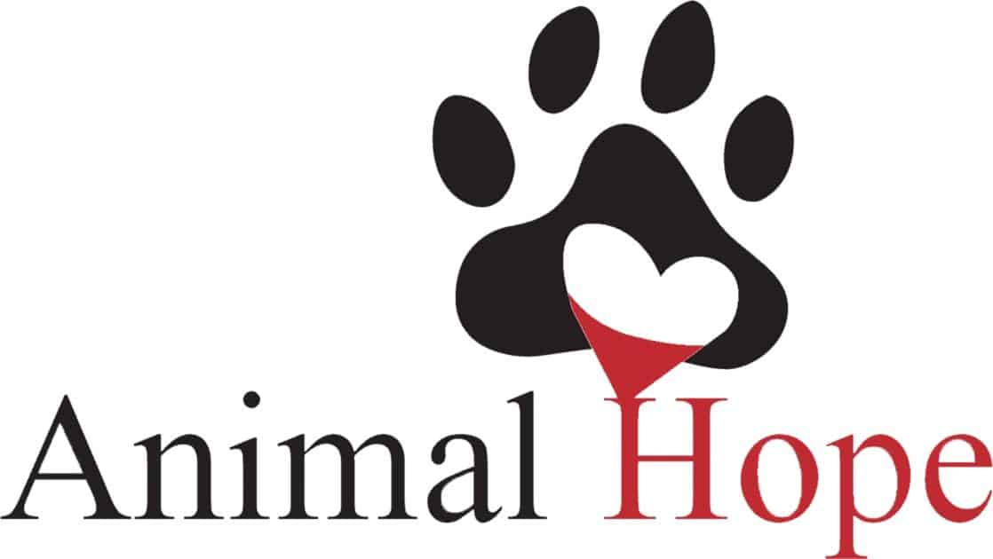 Animal Hope A Different Kind Of Shelter Rescue Rehab Rehome