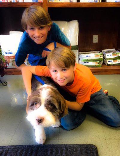 Animal_Hope_Adoption_Photo_135