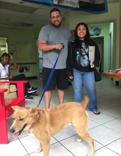 Animal_Hope_Adoption_Photo_345