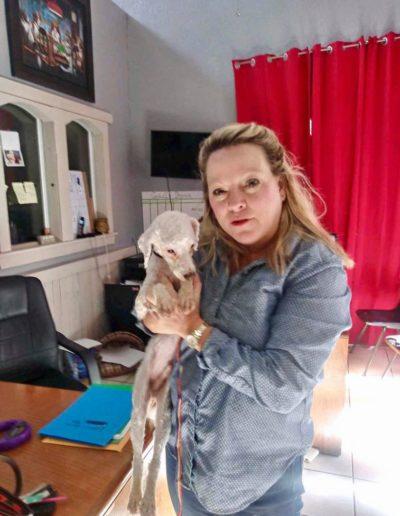 Animal_Hope_Adoption_Photo_609